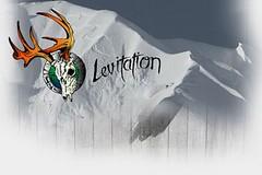The Levitation Project