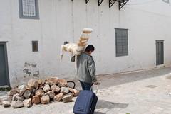 κουβαλώντας καρέκλες και βαλίτσες στην Υδρα