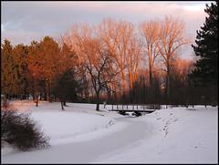 Winter Light (rocurti) Tags: park winter sunset andy ottawa andrew haydon
