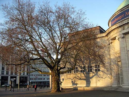 Kunsthalle Baum