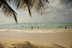 Fun in the Sun (Karen Brodie Photography) Tags: ocean shadow palm pigeonpoint tobago