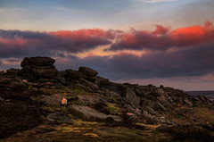 Higger Tor_140410_0300 Sunset (Steve Bark) Tags: uk sunset england sky twilight nikon rocks sheep dusk heather district derbyshire peak tor moor d300 higger copyrightstevebark