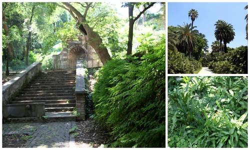 Orto botanico (Roma)