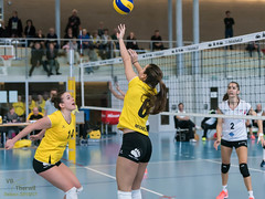 170211_VBTD1-Toggenburg_240.jpg (HESCphoto) Tags: volleyball vbtherwil volleytoggenburg damen nlb 99ersporthalle therwil saison1617