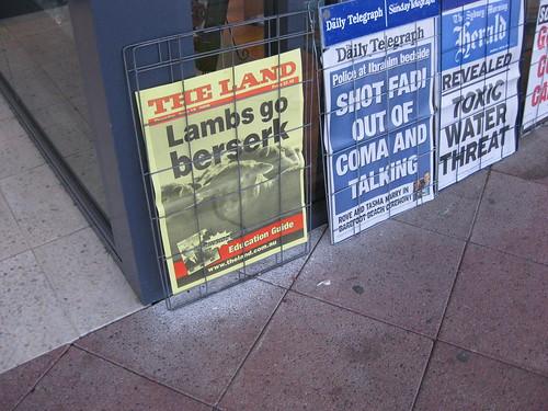 Lambs Go Berzerk!