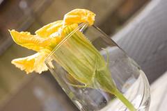 Stuffed Squash Blossom
