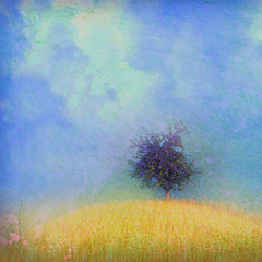 holiday tree ( Peter & Ute Grahlmann ) Tags: blue sky cloud tree art nature misty square golden hill soe wow1 wow2 wow3 wow4 wow5 wowhalloffame artlibre miasbest magicunicornverybest magicunicornmasterpiece