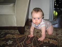 Trying to crawl (megano5678) Tags: keegan