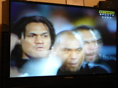 all blacks vs wallabies