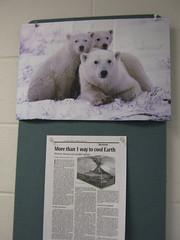 Polar Bears (tomcoben) Tags: green bears article polar