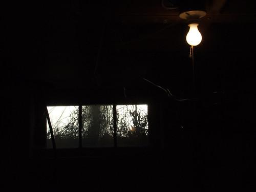 cellar light