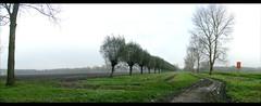 Flevoland, Polderland: Polder Panorama (H. Bos) Tags: flevoland polderland waterlandsebos waterlandswood klei panorama agrarisch agricultural holland november almere boerenland biepbeep schermalmere biepbeeb