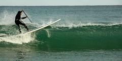 (Like Peter at Home) Tags: surf pals costabrava emporda standuppaddle