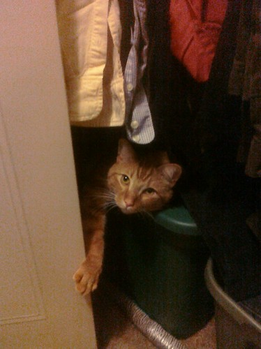 Ptw Leki has found a nice spot in my closet