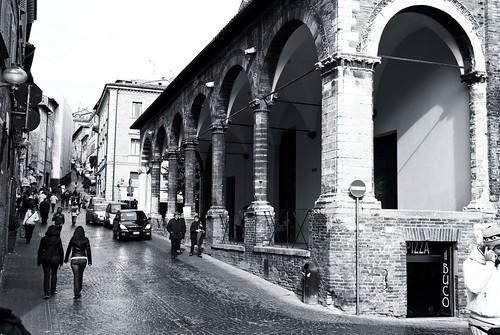Urbino has no color