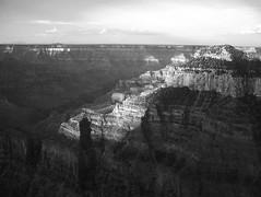 Daybreak at Grand Canyon North Rim (1) (tessarian) Tags: 2001 arizona bw usa southwest canon grandcanyon adobe digitalbw northrim elph photoshopelements digitalixus powershots100