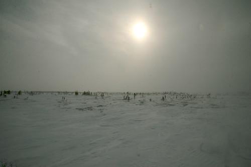 Manitoba 2008