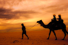 ride into the sunset (chylle) Tags: sunset beach silhouette australia camel nsw portstephens lpdesert lpdeserts