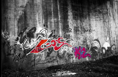 k2 colors copy (loganbertram) Tags: blackandwhite bw white black color photography graffiti fuji 200 pro fujifilm logan bertram hillsborough filterforge loganbertram loganbertramphotography
