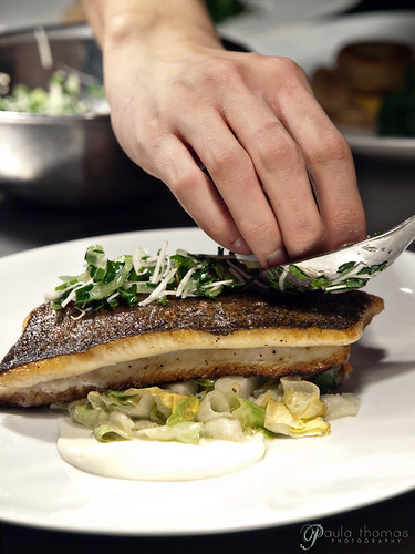 Plating Trout