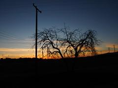 P2120599 (luisfernandomurguia) Tags: poto photography night star sihlouette sunset lights city moorpark california cali love life trending future past present moment capture tags likes hashtags insta twitter yahoo flickr