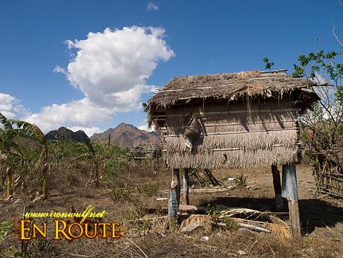 Buhid Mangyan Elevated Storage Hut