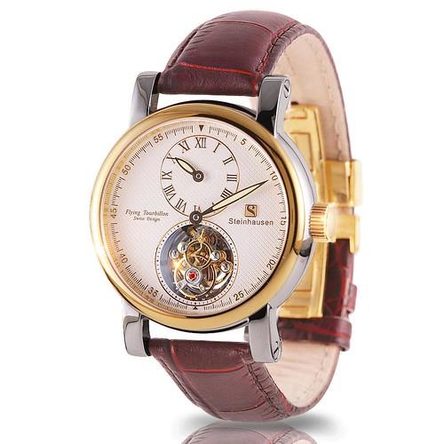 Tourbillon Mechanical Watch (TW521)G-B 2