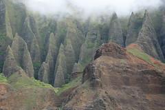 Giant Spearheads (Joyce and Steve) Tags: hawaii kauai napalicoast