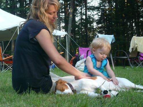 Babies pet dogs