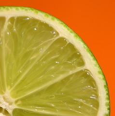 Complimentary lime - close (Macrolensfan) Tags: citrus markensgrde flickrchallengegroup flickrchallengewinner twphch fromsoil differentlightsettings