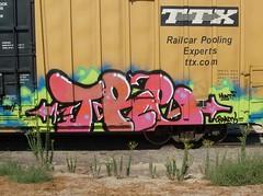 TRE (BGIZL) Tags: graffiti tre boxcars nsf dethcult