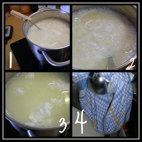 Cottage Cheese Making Process