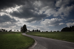 go your own way (gato-gato-gato) Tags: street trees sky tree clouds germany way deutschland view strasse himmel wolken desaturated aussicht bume baum weg naturephotography tennenbronn outdoorphotography auerhahn canon2470mmf28lusm gatogatogato canoneos5dmarkii gatogatogatoch