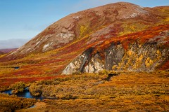 You Are Water for a Hot Thirsty Day (code poet) Tags: blue autumn red sky mountain fall water yellow rock alaska clouds creek landscape moss stream hill willow 5d tundra 24105mm reddogmine reddogcreek