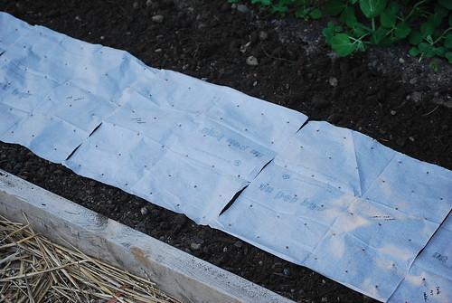 seed mats