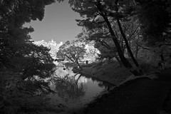 Rikugien Shadows (aeschylus18917) Tags: park trees lake monochrome grass japan garden landscape ir tokyo japanesegarden pond nikon scenery d70 nikond70 surreal infrared 日本 東京 nikkor matsu pinetrees 庭 1870mm pxt 公園 f3545g rikugien 1870 六義園 赤外線 日本庭園 文京区 1870f3545g rikugiengarden bunkyōku bunkyō nihonteien rikugienpark ダニエル nikkor1870f3545g rikugienkoen danielruyle aeschylus18917 danruyle druyle rikugeinkoen ルール ダニエルルール rikiguen nikkor1870f3545gdx