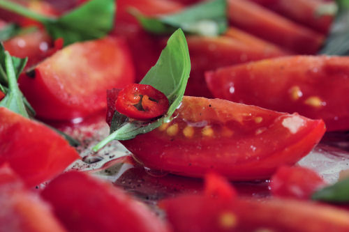 roasting tomatoes 5982 R