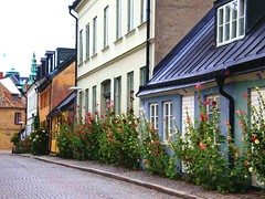 It is so pretty in Lund (NotYetTheDodo) Tags: street flowers houses lund sweden facades cobblestones