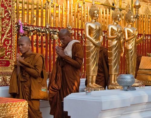 Chiang Mai 15