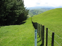 New Zealand 164 (sandwes) Tags: newzealand northisland mountainbiking hawkesbay