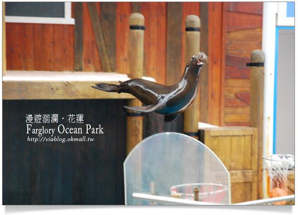 花蓮海洋公園一日遊19