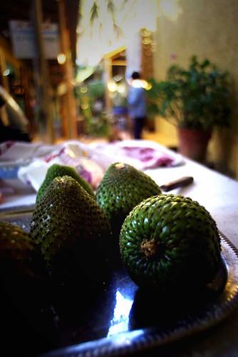 Frutto del Cactus, foto di Massimo Di Terlizzi