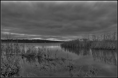 The Pike Lake (Emil Thorsteinsson) Tags: