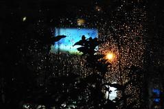 See The Light! ((Vakis) Varnavas Varnava) Tags: plants glass coffee leaves reflections cyprus coffeeshop citylights raindrops nite d300 larnaka goldenglow silhuettes nitelights nikond300 cypru