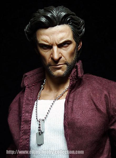 Wolverine (8)