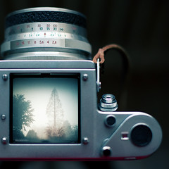 /|\ (Tanja Deu) Tags: 50mm nophotoshop kchenfenster praktisix hindurch blende14 5dmarkii blende5 lichtschachtisttoll schickeaussicht