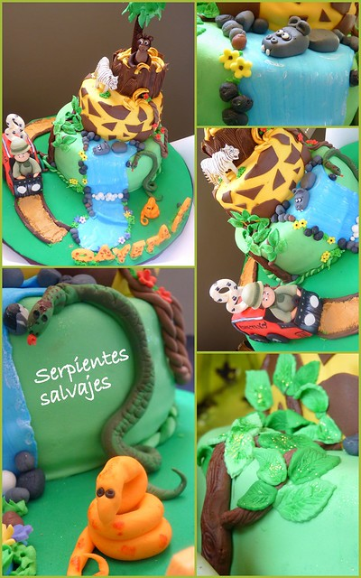 3Detalles jungle cake cayetano