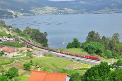 Redondela (REGFA251013) Tags: comboio mercadorias mercancias tren train comsa takargo adif redondela tramesa 6000 euro400 335 españa portugal galicia