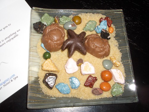 Chocolates in seashore rock form