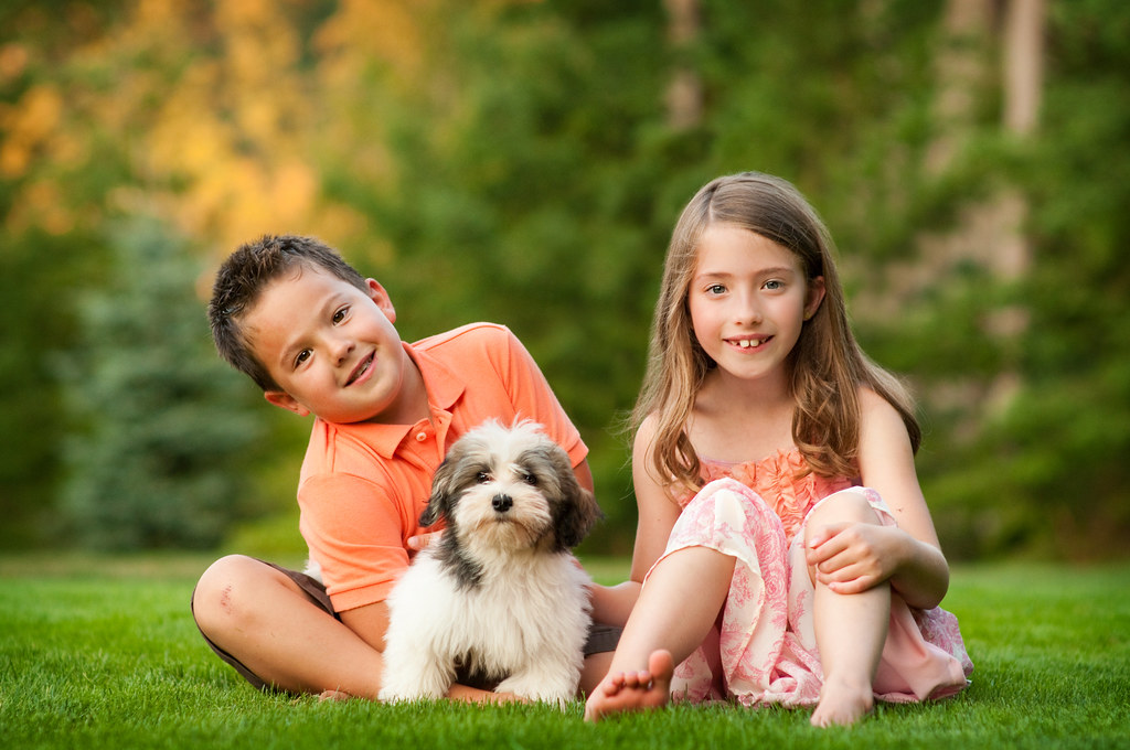 kids with puppy